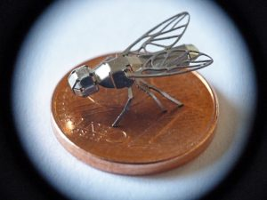 Fliege auf Centstück
